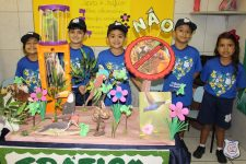 feira-ciencias-educ-infantil-clt-2019-012