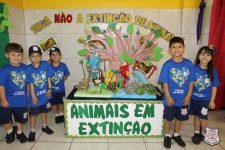 feira-ciencias-educ-infantil-clt-2019-013