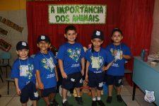 feira-ciencias-educ-infantil-clt-2019-023