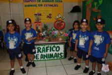 feira-ciencias-educ-infantil-clt-2019-024