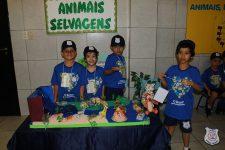 feira-ciencias-educ-infantil-clt-2019-025