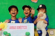 feira-ciencias-educ-infantil-clt-2019-062