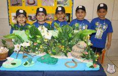 feira-ciencias-educ-infantil-clt-2019-071