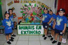 feira-ciencias-educ-infantil-clt-2019-072
