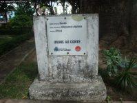 2011_aula_campo_019
