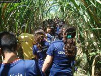 2011_aula_campo_077