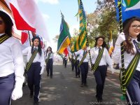 desfile_civivo_clt_2016_grandes_014